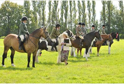 Sullivan's Heroes at Dormansland Horse & Dog Show