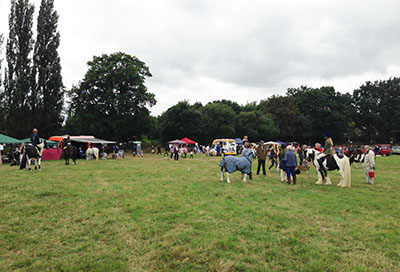 Our thanks to Dormansland Horse & Dog Show